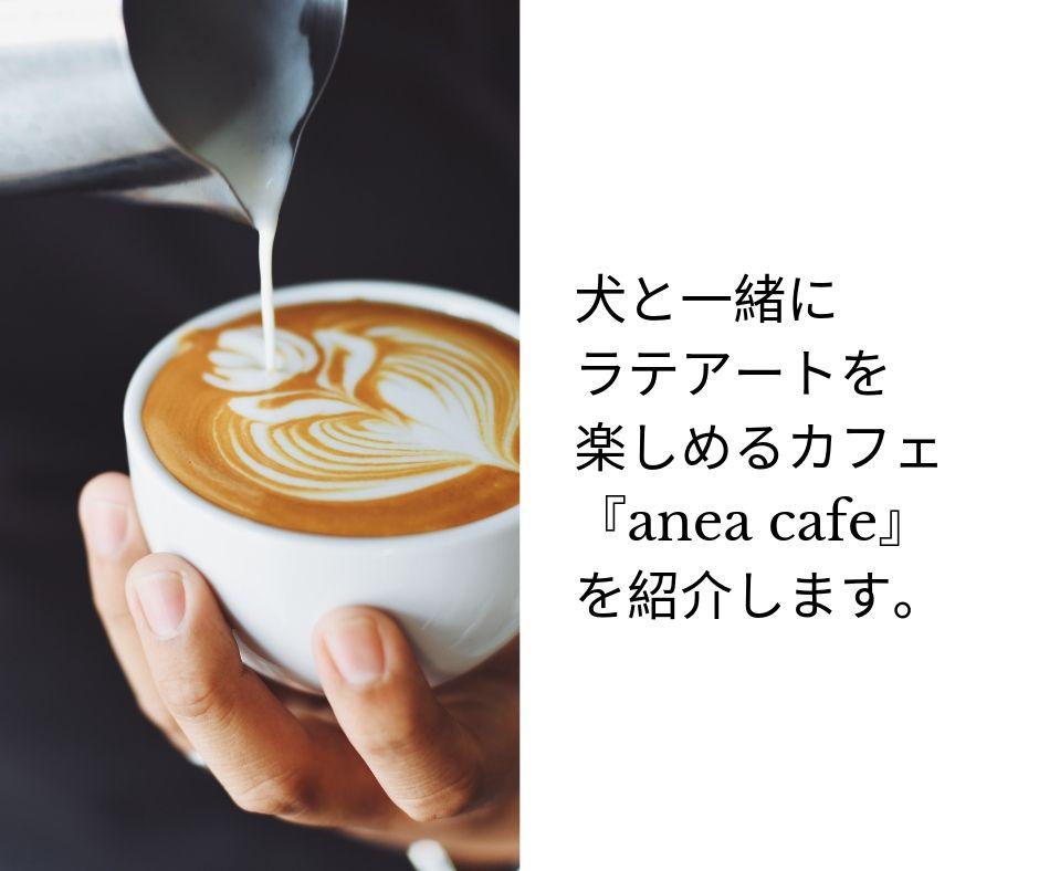 anea-cafe